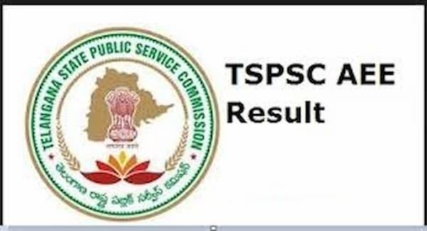 TSPSC AEE Result 2020